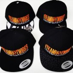 Temp Image Team Hotwires SnapBacks